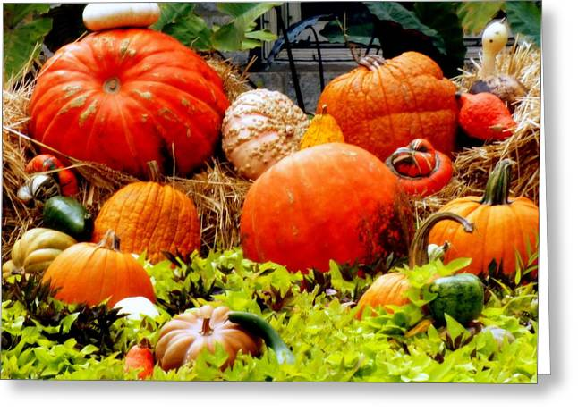 Harvest Time Photographs Greeting Cards - Pumpkin Harvest Greeting Card by Karen Wiles