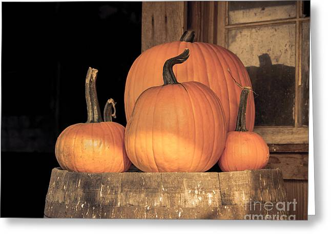 Autumn Prints Greeting Cards - Pumpkin Harvest Greeting Card by Lucid Mood