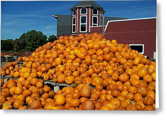 Pumpkin Heaven Greeting Card by David Schneider