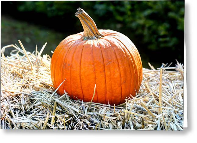 Farm Stand Greeting Cards - Pumpkin in the Hay Greeting Card by Laura Duhaime