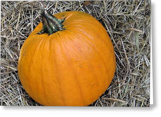 Maine Farms Greeting Cards - Pumpkin In The Hay Greeting Card by Patricia Sundik