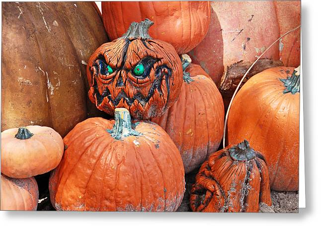 Pumpkin Patch Greeting Card by Aimee L Maher Photography and Art Visit ALMGallerydotcom