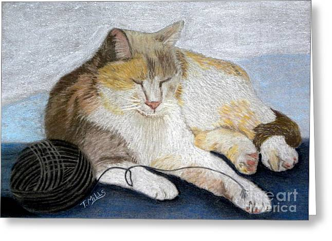 Mills Pastels Greeting Cards - Pumpkin Patch - Calico Cat Greeting Card by Terri Mills