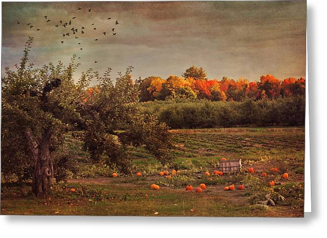 New England Autumn Scenes Greeting Cards - Pumpkin Patch in Autumn Greeting Card by Joann Vitali