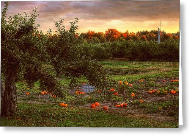 Autumn Scenes Greeting Cards - Pumpkin Patch Greeting Card by Joann Vitali