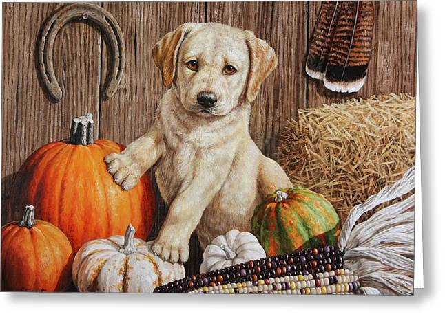 Yellow Dog Paintings Greeting Cards - Pumpkin Puppy Greeting Card by Crista Forest