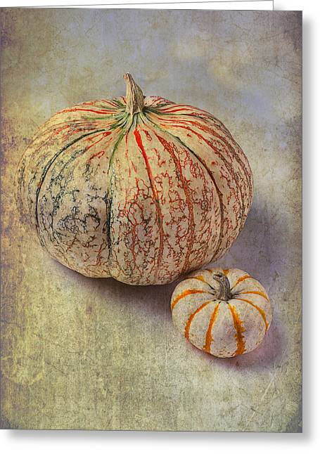 Ornamentation Greeting Cards - Pumpkin Textures Greeting Card by Garry Gay