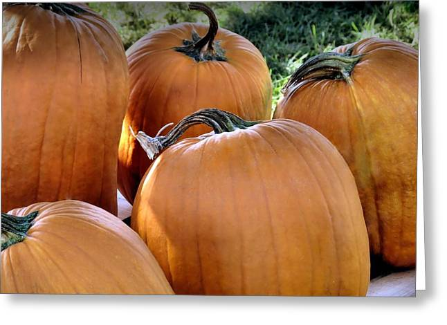 Farmstand Greeting Cards - Pumpkin Time Greeting Card by Janice Drew