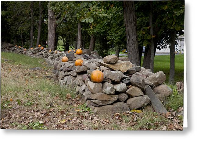 Stone Fence Greeting Cards - Pumpkins adorn a Connecticut stone fence Greeting Card by Carol M Highsmith