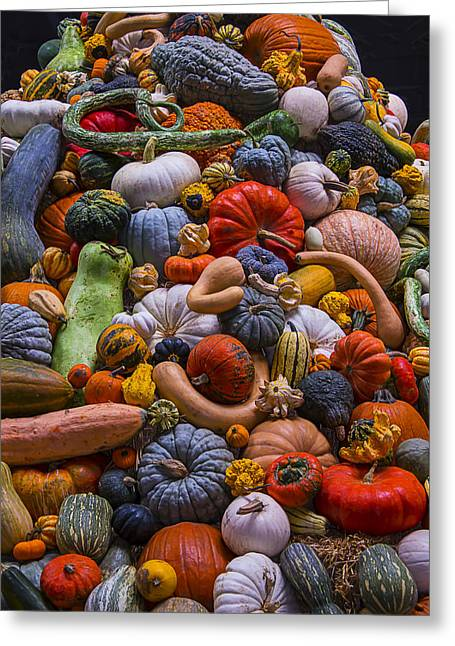 Gourds Greeting Cards - Pumpkins and Gourds Pile Greeting Card by Garry Gay