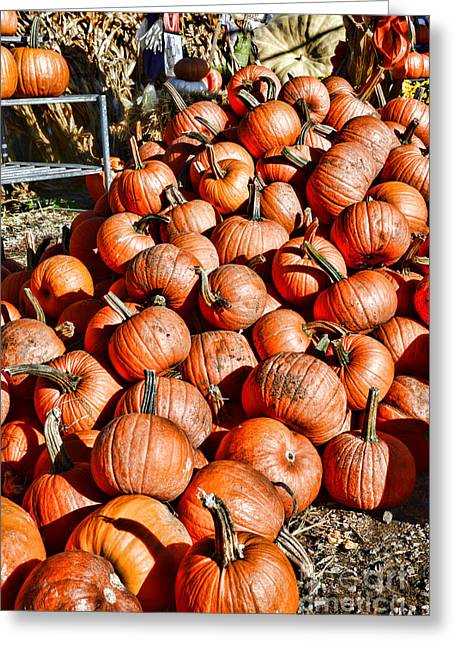 Trick-or-treat Greeting Cards - Pumpkins and more Greeting Card by Paul Ward