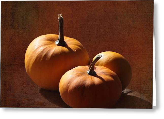 Mini Pumpkins Greeting Cards - Pumpkins Greeting Card by Angie Vogel