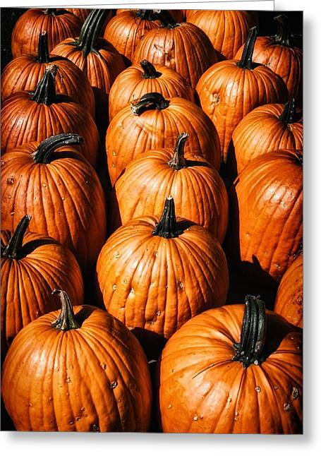 Fresh Produce Mixed Media Greeting Cards - Pumpkins Greeting Card by Todd and candice Dailey