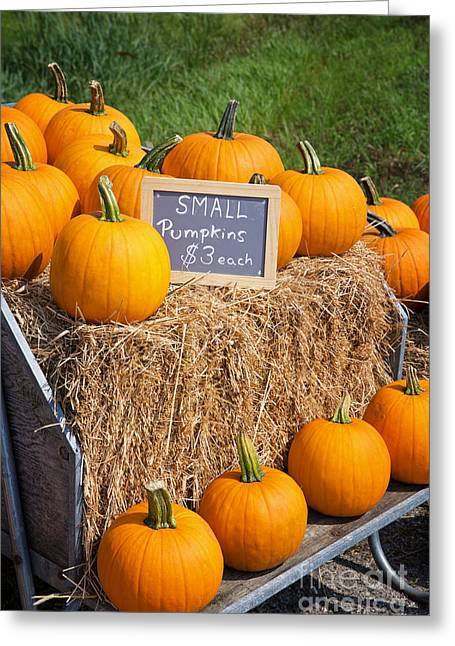 Loaded Greeting Cards - Pumpkins for sale Greeting Card by Jane Rix