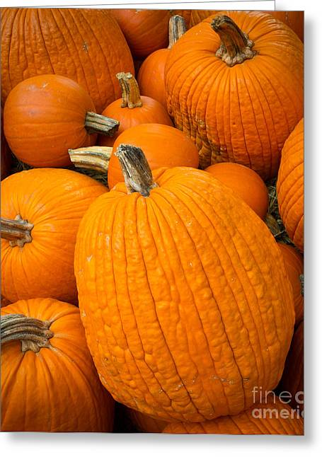 Orange Pumpkin Greeting Cards - Pumpkins Greeting Card by Inge Johnsson