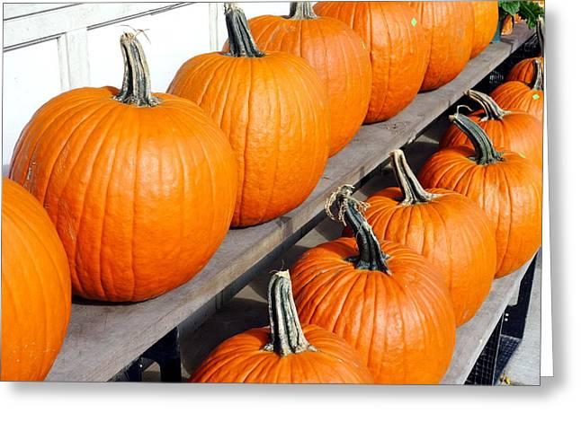 Pumpkins Greeting Card by Valentino Visentini