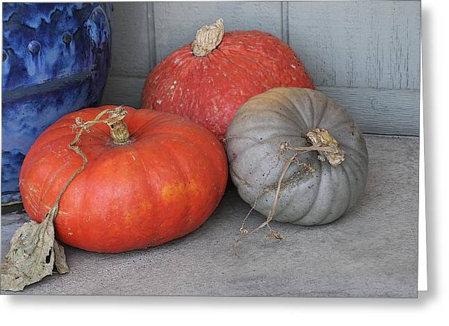 Cambria Photographs Greeting Cards - Pumpkins With Blue Planter Greeting Card by Art Block Collections