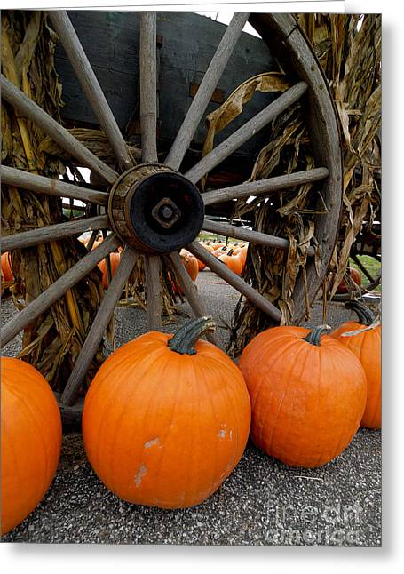 Harvesting Greeting Cards - Pumpkins with Old Wagon Greeting Card by Amy Cicconi