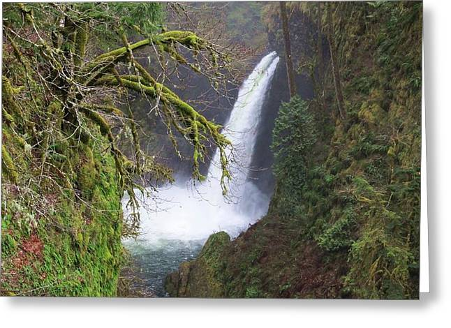 Eagle Creek Greeting Cards - Punchbowl Falls Greeting Card by Nathan Marcy