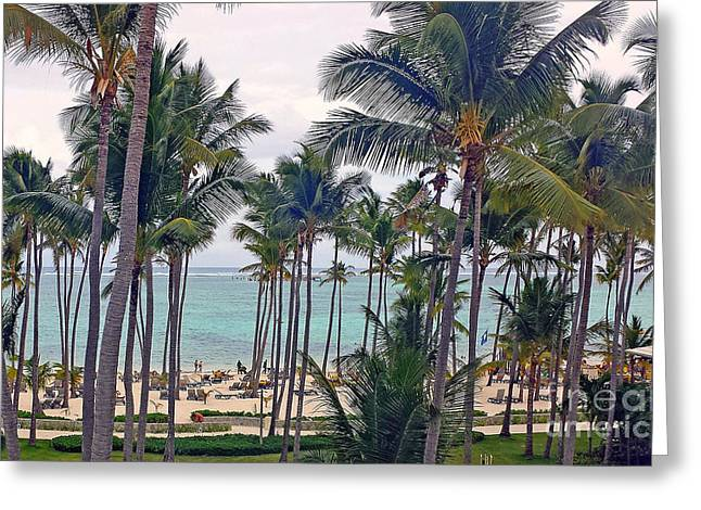 Purchase Greeting Cards - Punta Cana  Greeting Card by Kay Novy