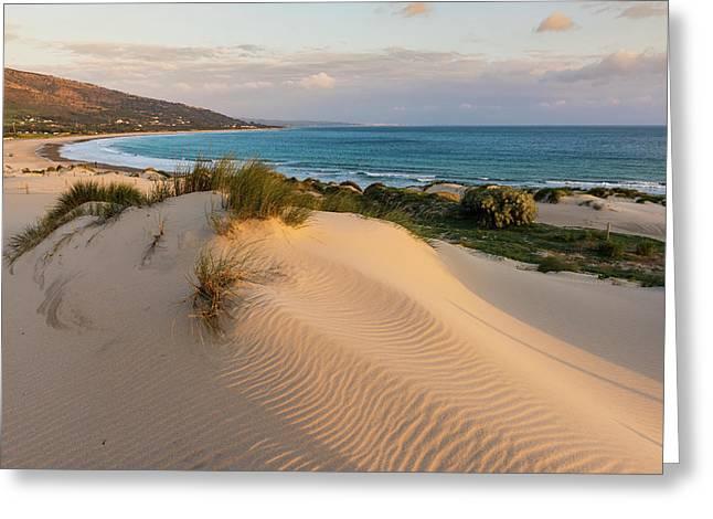 Punta Paloma Sand Dunes  Tarifa, Costa Greeting Card by Ben Welsh