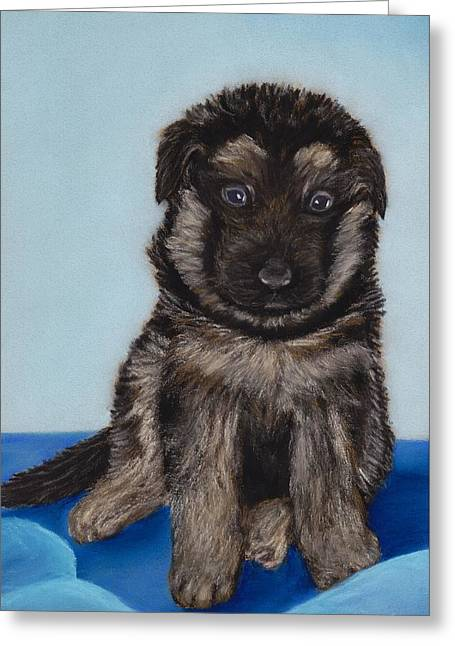 Breeds Pastels Greeting Cards - Puppy - German Shepherd Greeting Card by Anastasiya Malakhova