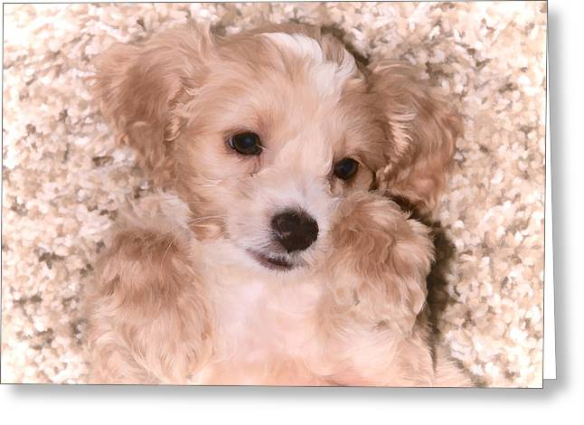 Dad Eyes Greeting Cards - Puppy Love Greeting Card by Athena Mckinzie