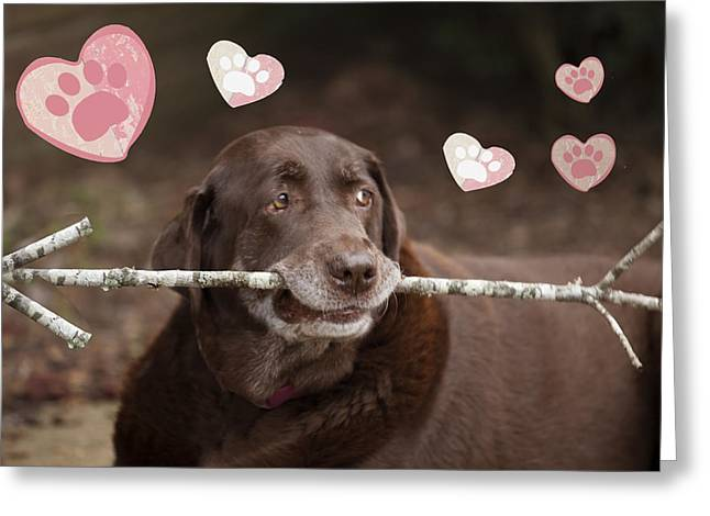 Chocolate Lab Greeting Cards - Puppy Love Greeting Card by Laura Greene