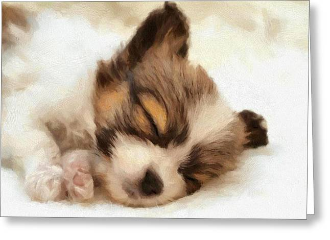 Puppy Digital Greeting Cards - Puppy nap Greeting Card by Gun Legler