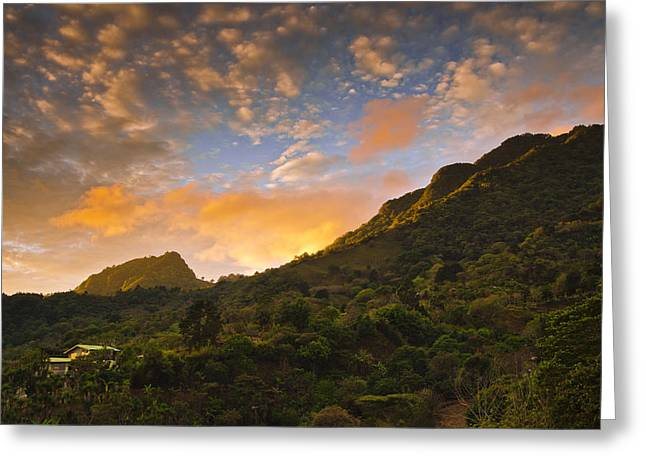 Jungle Greeting Cards - Pura Vida Costa Rica Greeting Card by Aaron S Bedell
