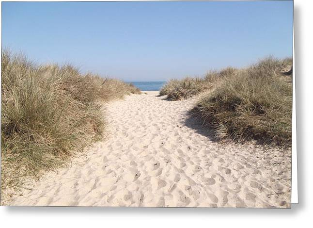 Sand Dunes Pyrography Greeting Cards - Purbeck Dunes Greeting Card by Robert Carter