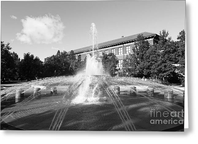 Boiler Greeting Cards - Purdue University Loeb Fountain Greeting Card by University Icons