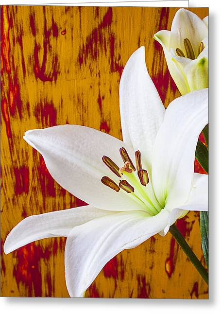 Stamen Greeting Cards - Pure White Lily Greeting Card by Garry Gay