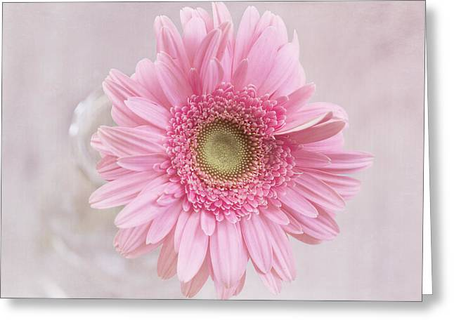 Textured Floral Greeting Cards - Purity of the Heart Greeting Card by Kim Hojnacki