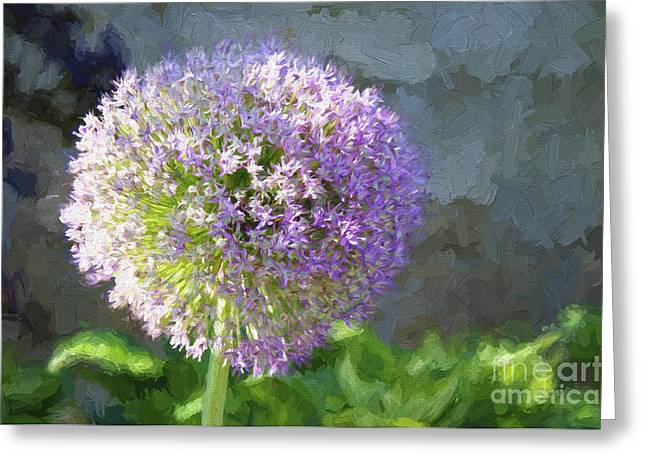 Allium Hollandicum Greeting Cards - Purple Allium 2 Hollandicum Sensation  Greeting Card by Andee Design