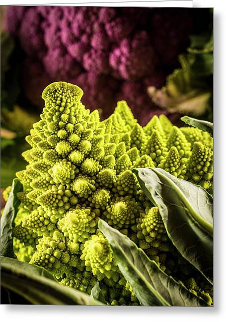 Purple And Romanesque Cauliflowers Greeting Card by Aberration Films Ltd