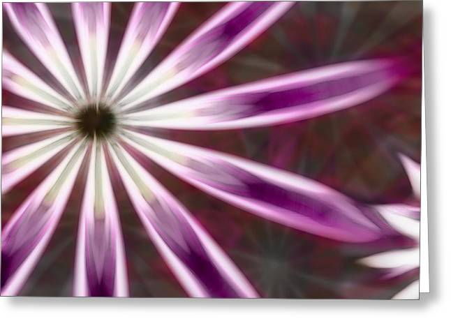 Manley Greeting Cards - Purple and White Fractal Flower  Greeting Card by Gina Lee Manley