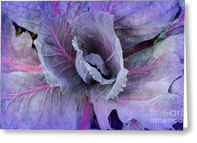 Violet Art Mixed Media Greeting Cards - Purple Cabbage - Vegetable - Garden Greeting Card by Andee Design
