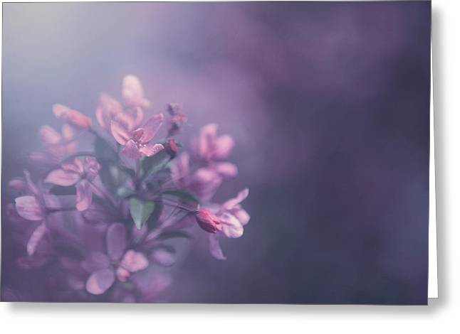 Pink Blossoms Greeting Cards - Purple Greeting Card by Carrie Ann Grippo-Pike