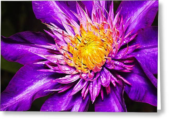 Floral Digital Art Digital Art Greeting Cards - Purple Clematis Flower Greeting Card by Bill Caldwell -        ABeautifulSky Photography