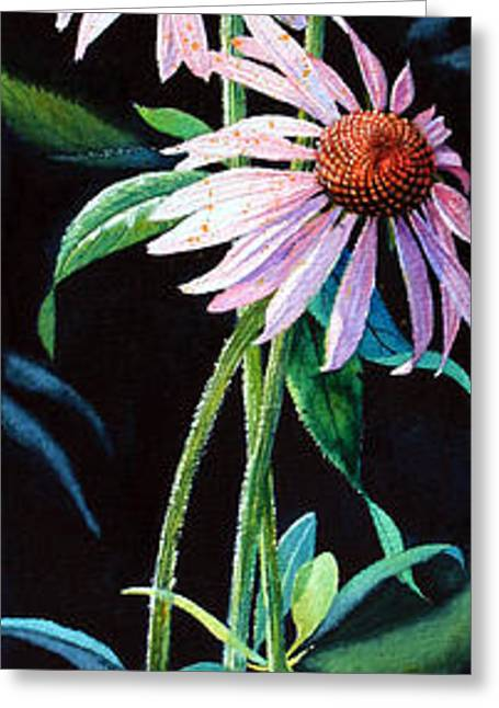 Canadian Illustrator Greeting Cards - Purple Cone Flower 2 Greeting Card by Hanne Lore Koehler