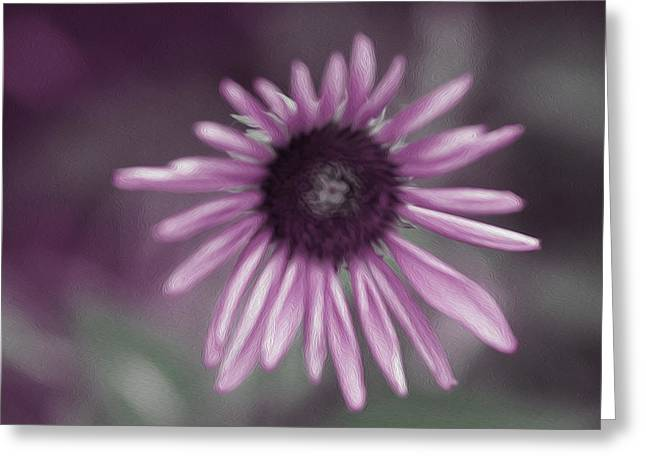 Abstracted Coneflowers Greeting Cards - Purple cone flower Greeting Card by Lanjee Chee