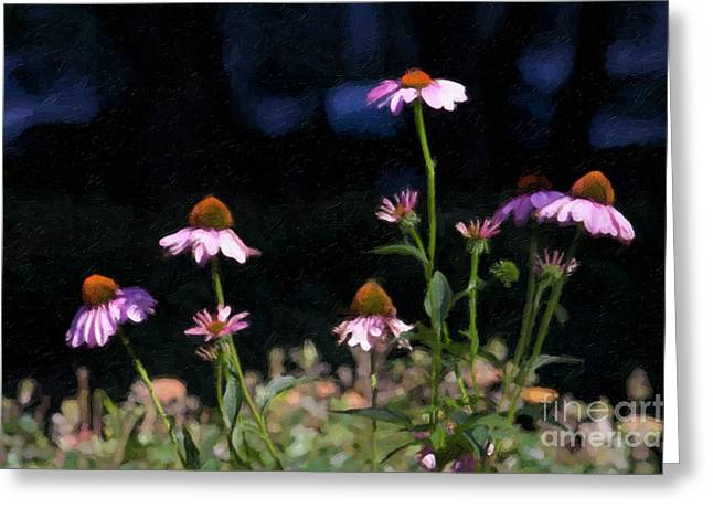 Linda Matlow Greeting Cards - Purple Coneflowers Echinacea Greeting Card by Linda Matlow