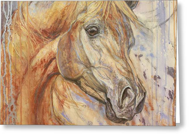Horses Paintings Greeting Cards - Purple Dawn Arabian Greeting Card by Silvana Gabudean