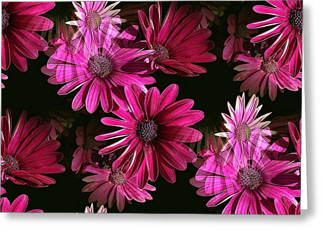 Award Winning Art Greeting Cards - Purple Greeting Card by Dennis Buckman