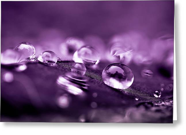Droplet Greeting Cards - Purple Droplets Greeting Card by Shane Holsclaw