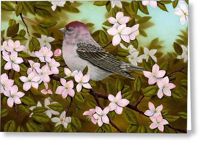 Flowering Greeting Cards - Purple Finch Greeting Card by Rick Bainbridge