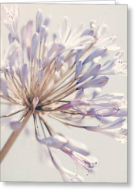 Floral Photographs Greeting Cards - Purple flower Greeting Card by Nastasia Cook