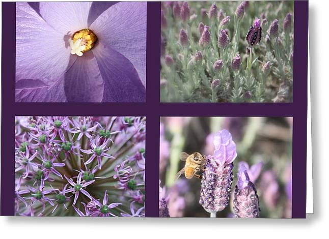 Purple And Green Greeting Cards - Purple Flowers Collage Greeting Card by Carol Groenen