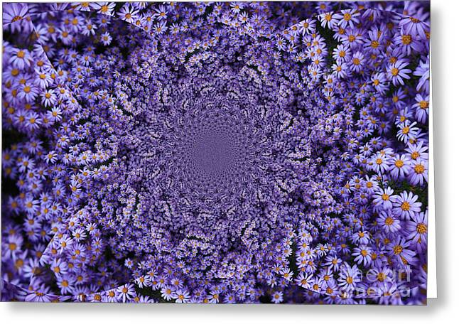 Aster Greeting Cards - Purple Flowers Kaleidoscope Greeting Card by Carol Groenen